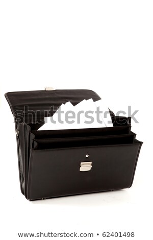 Office Paper Documents and Briefcase Isolated Stock photo © robuart