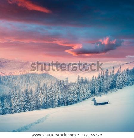 Wonderful winter scenery with mountain hut Stock photo © Kotenko