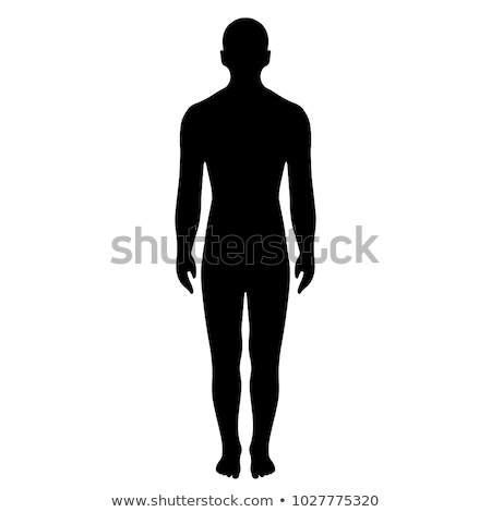 Stock photo: Silhouette human body on white background
