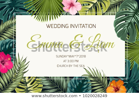 Monstera Tropical Exotic Bush Leaves Banner Vector Stock photo © pikepicture