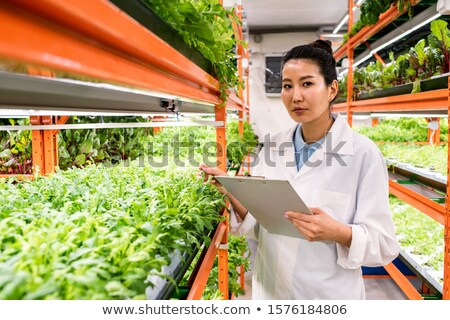 Contemporary young agronomist of Asian ethnicity making research Stock photo © pressmaster