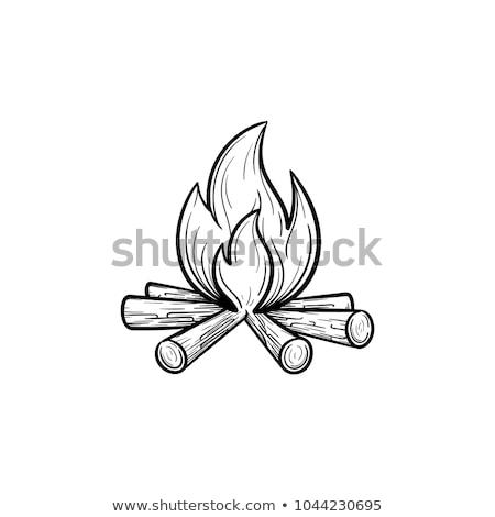Camping fuego leña icono vector Foto stock © pikepicture