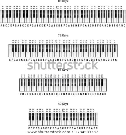 фортепиано стандартный ключевые Этикетки изолированный вектора Сток-фото © jeff_hobrath