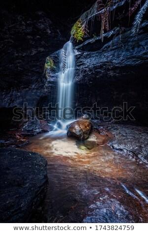 滝 小 峡谷 青 山 岩 ストックフォト © lovleah