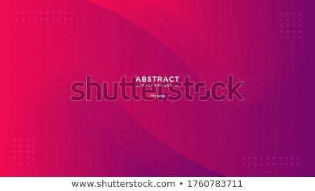 Moderna fluido rojo gradiente banner curva Foto stock © SArts