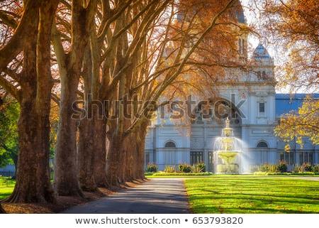 осень · ботанический · сад · пути · желтый · листьев - Сток-фото © Traven