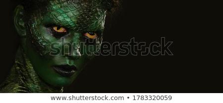 Portré kígyó bőr felfelé zárt halál Stock fotó © HASLOO