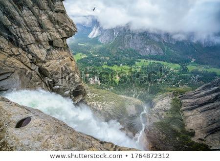 Yosemite Fall stock photo © bryndin