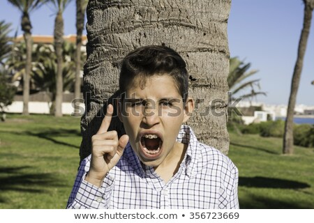 angry boy with finger to you Stock photo © Paha_L