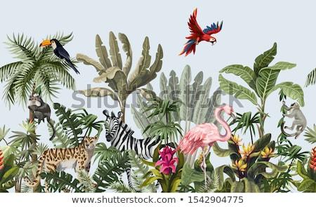Dzsungel állatok sziluettek textúra naplemente természet Stock fotó © Vg