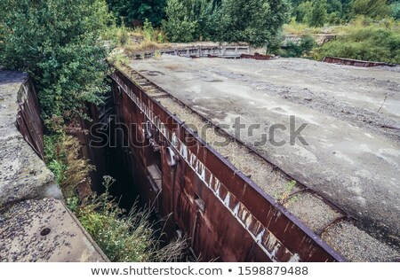 Moldovian Soviet Republic Stock photo © perysty