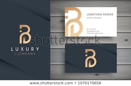 Exclusief bedrijf logos ontwerp kruis print Stockfoto © butenkow