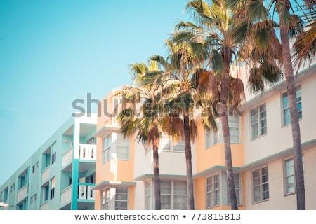Art deco építészet Miami égbolt fa utca Stock fotó © meinzahn
