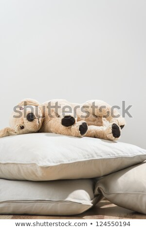 Cute plush soft dog laying on pillow alone. Soft friends become  Stock photo © HASLOO