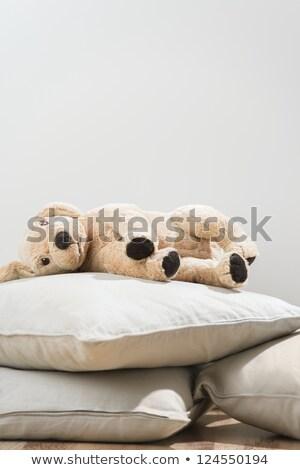 pluche · hond · hoog · foto · geïsoleerd - stockfoto © hasloo