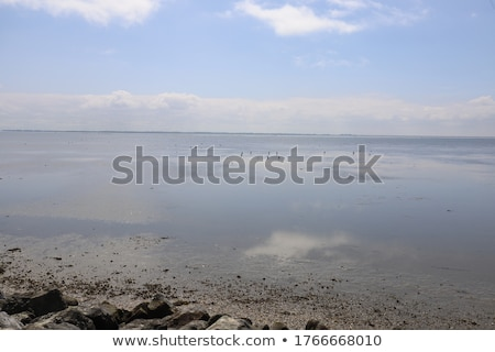 reef in the ocean on low tide stock photo © jeremywhat