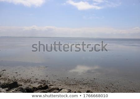 Oceaan laag getij strand natuur zee Stockfoto © jeremywhat