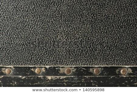 Skóry walizkę moda projektu Zdjęcia stock © deyangeorgiev
