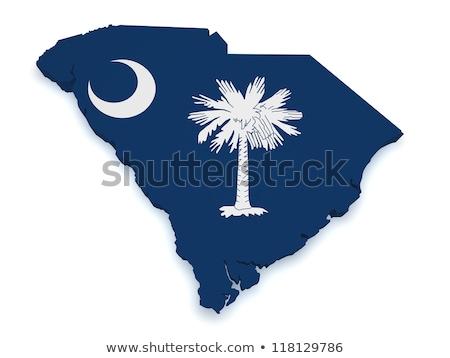 Foto d'archivio: South Carolina Flag Map 3d Shape