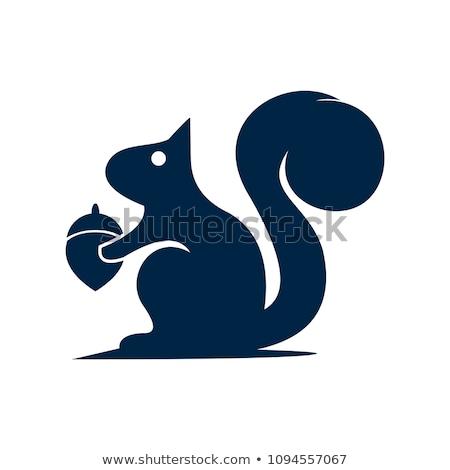 Vecteur icône écureuil gland Photo stock © zzve
