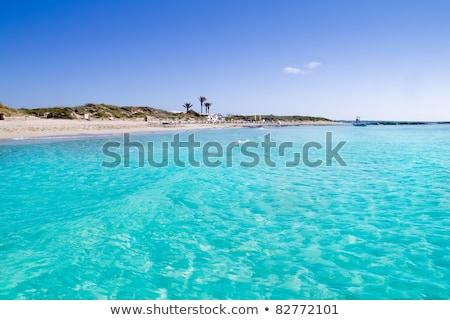 Llevant Beaches in Formentera, Balearic Islands, Spain Stock photo © nito