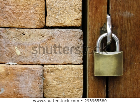 Rusty padlocked door Stock photo © lovleah