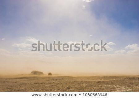 Storm in the Mojave Desert Stock photo © emattil