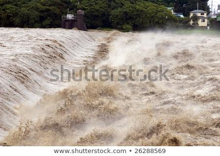 реке наводнения моста воды Сток-фото © Kayco