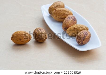 bruin · noten · rij · natuur · vruchten · achtergrond - stockfoto © sfinks