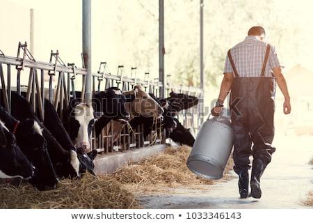 Agricultor granero silueta ilustración pie casa Foto stock © rudall30