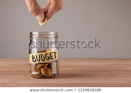 BUDGET Stock photo © chrisdorney