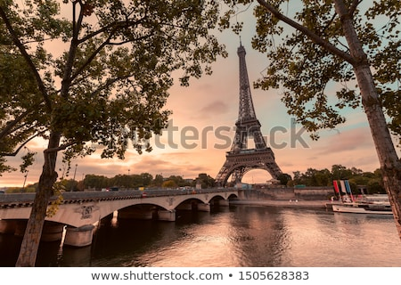 橋 · 川 · 午前 · パリ · フランス · ツリー - ストックフォト © anshar