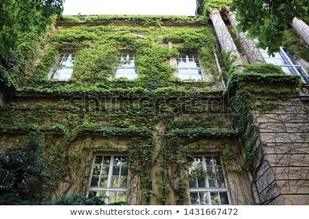 Stock fotó: öreg · elhagyatott · kő · ház · Saskatchewan · Kanada