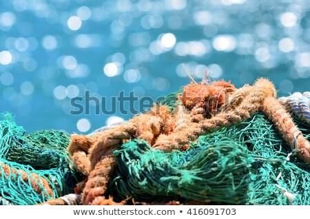 漁網 水 海 ボート 釣り ヨーロッパ ストックフォト © LianeM
