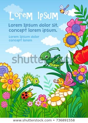 quadro · erros · flor · primavera · borboleta · feliz - foto stock © aliaksandra