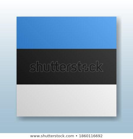 Knop symbool Estland vlag kaart witte Stockfoto © mayboro1964