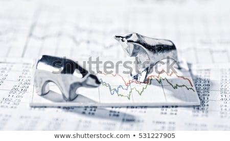 bull market risk stock photo © lightsource