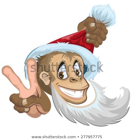 Małpa Święty mikołaj hat dwa palce Zdjęcia stock © orensila