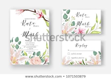 Esküvői meghívó fehér kép illusztráció magnolia virágok Stock fotó © Irisangel