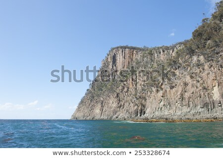 Wyspa stromy Urwisko południowy ocean tasmania Zdjęcia stock © roboriginal