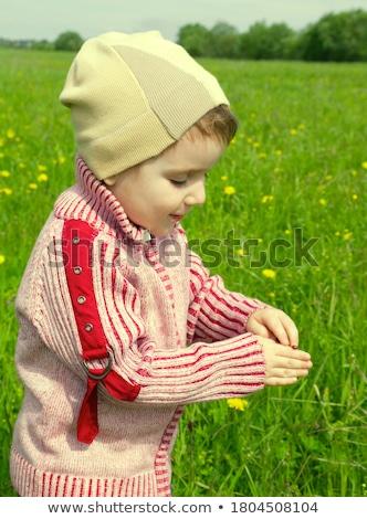Boy, Herb'te Böcek Arıyor Stok fotoğraf © Fanfo