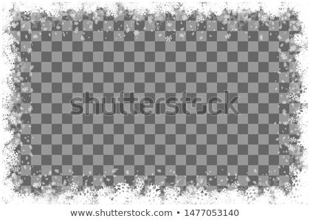 Fagyos ablak természetes minta tél absztrakt Stock fotó © ptichka