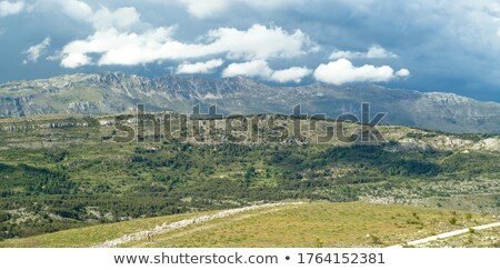 scenic panorama view of a picturesque mountain village in monten stock photo © vlad_star
