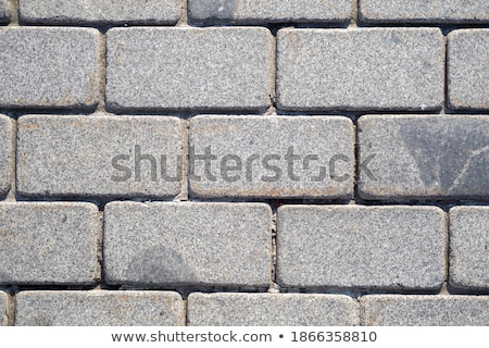 gray pavement in the form of brickwork stock photo © tashatuvango