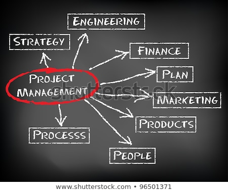 hand drawn project management concept on chalkboard stock photo © tashatuvango