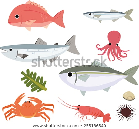 海洋 食品 魚 実例 勾配 ストックフォト © ConceptCafe