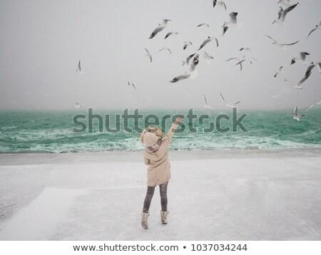 Hongerig zeemeeuw blauwe hemel oostzee oceaan Stockfoto © meinzahn