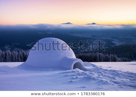 Nature scene with igloo on the ground Stock photo © bluering