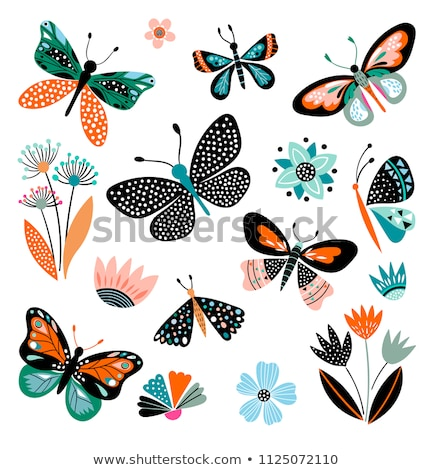 hand drawn illustration with butterfly stock photo © Natali_Brill