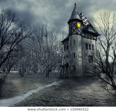 halloween house night sky background with moon and flying bats stock photo © sarts